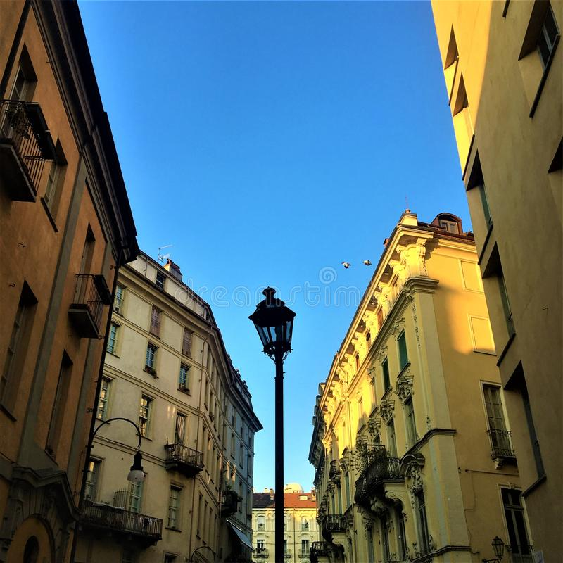 Turin city, street lamp, flying birds and sky royalty free stock photography