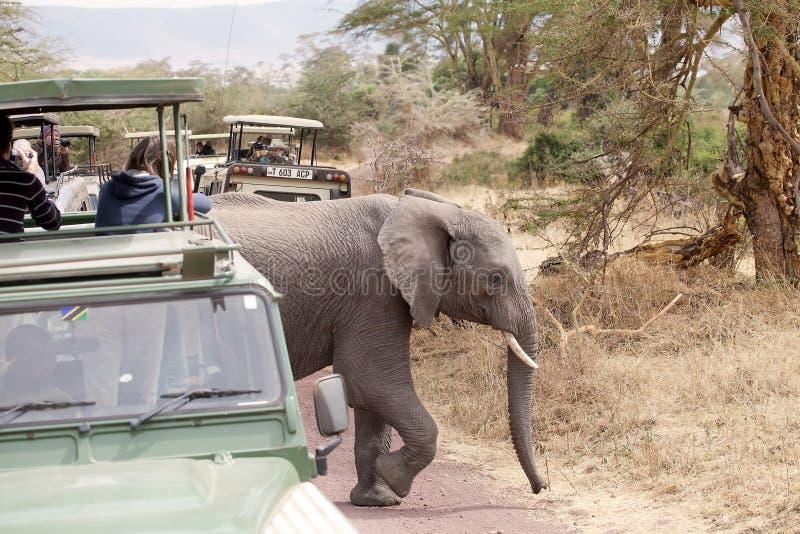 Turismo africano immagini stock libere da diritti