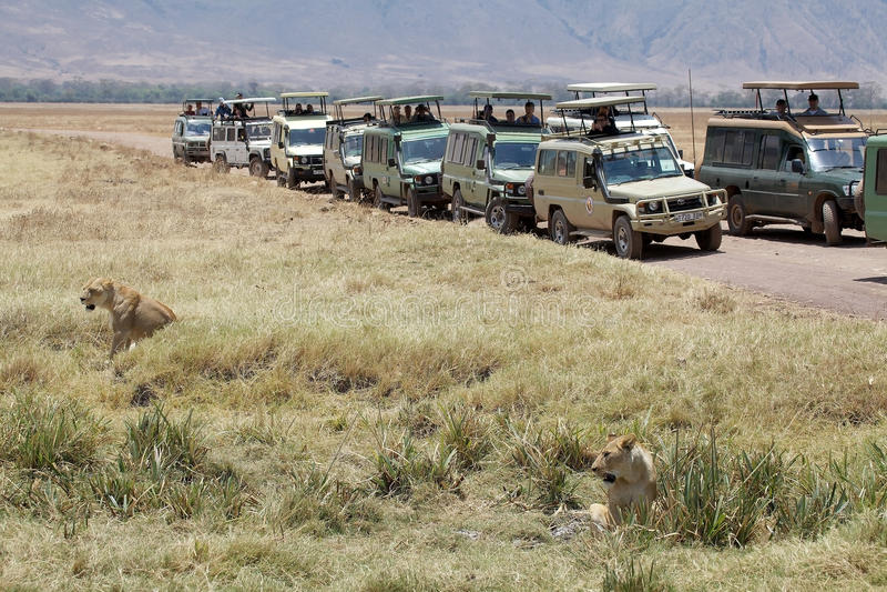 Turismo africano fotografie stock