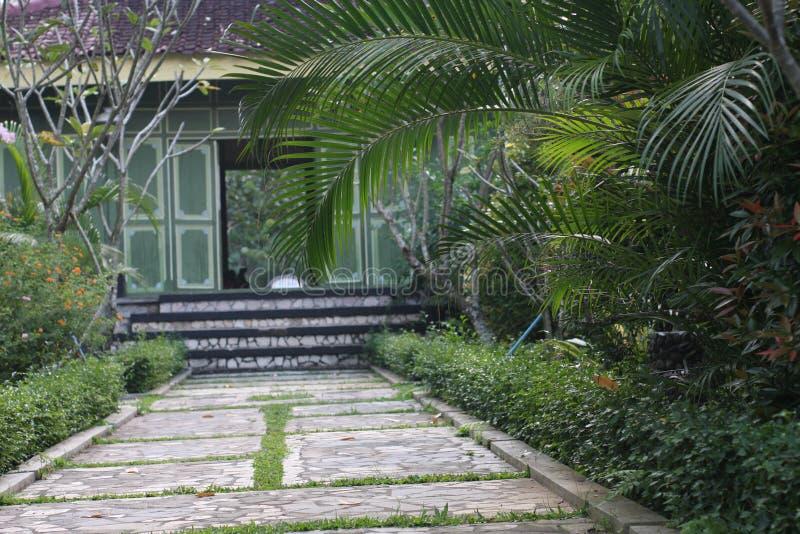 Turismo in Borobudur Indonesia fotografia stock libera da diritti