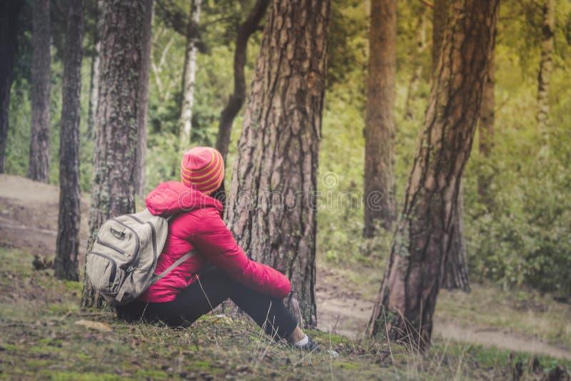 Turismo de la mujer Detrás del viajero en el bosque busca el camino La mujer joven hermosa es que viaja y de reclinación en el bo fotos de archivo