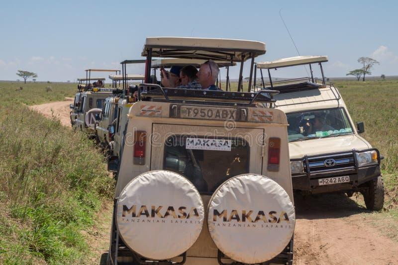 Turismo maciço: Turistas do safari que procuram animais selvagens imagens de stock royalty free