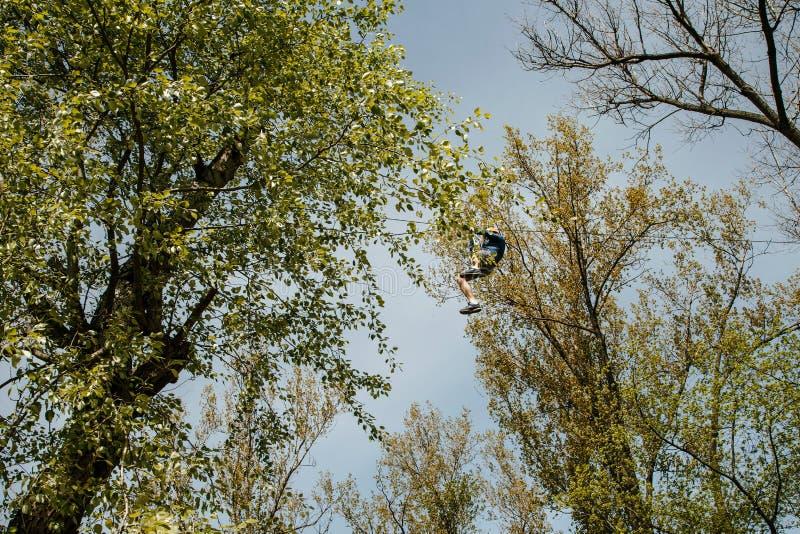 turismo Resto attivo in parchi ed in foreste Teleferica fra gli alberi Un uomo si siede su una corda da un albero mountaineering immagine stock libera da diritti