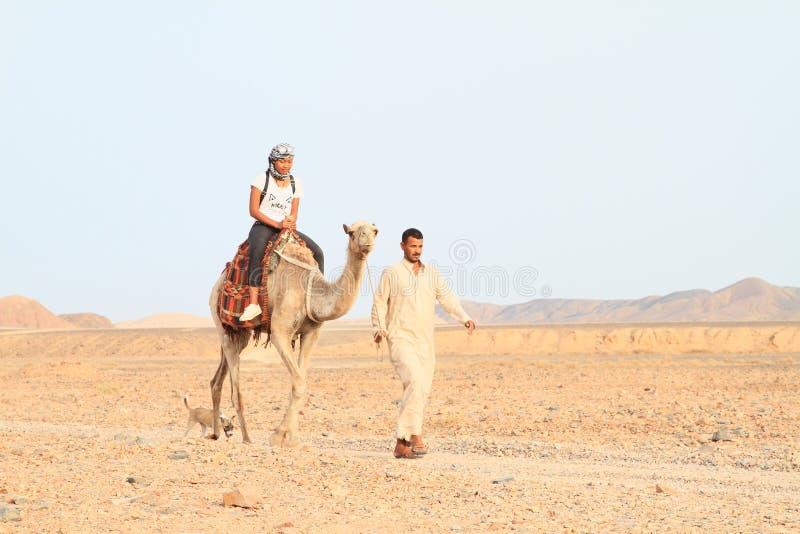 Turist- flicka som rider en kamel arkivfoto