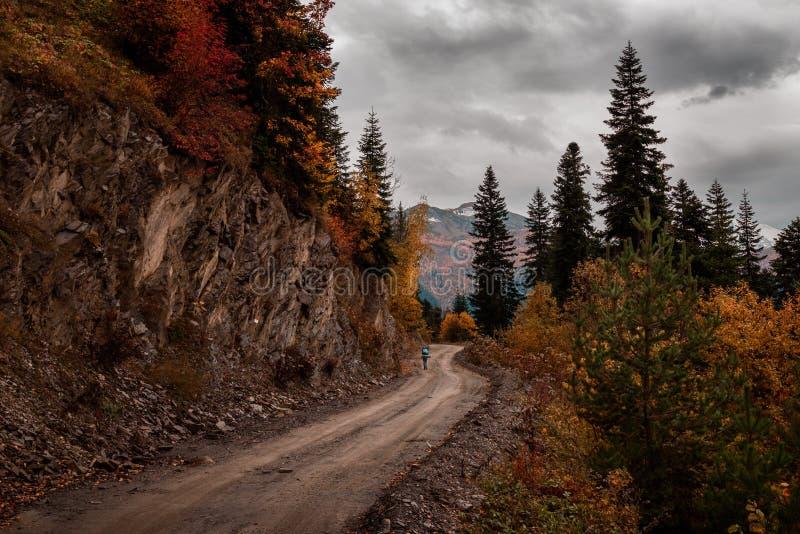 Turist-flickan går på en grusväg på bakgrunden av berg fotografering för bildbyråer