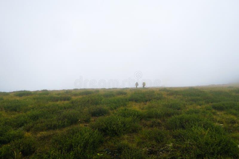 Turist- gå i dalen för dimmigt berg Altai berg, Ryssland arkivfoton