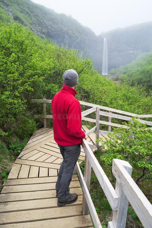 Turist i ett rött omslag som ser en vattenfall i Island arkivfoto