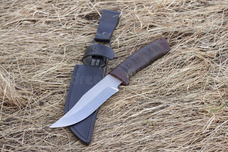 Turist- kniv p? torrt gr?s, jaktkniv som d?dar, royaltyfria bilder