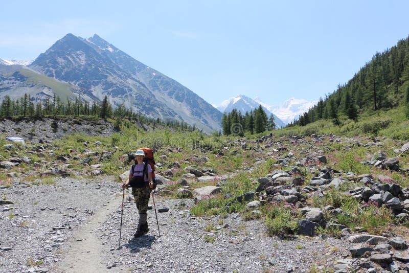 Turist- kvinnaanseende på foten av det Belukha berget, Alta royaltyfri foto