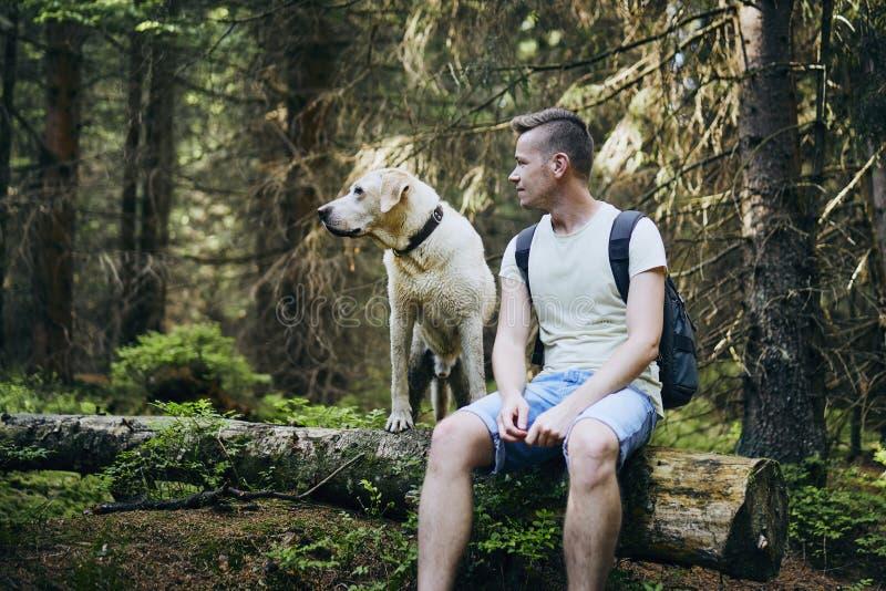 Turist med hunden i skog royaltyfri fotografi