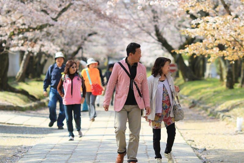 turist på den Daigo jien kyoto arkivfoto