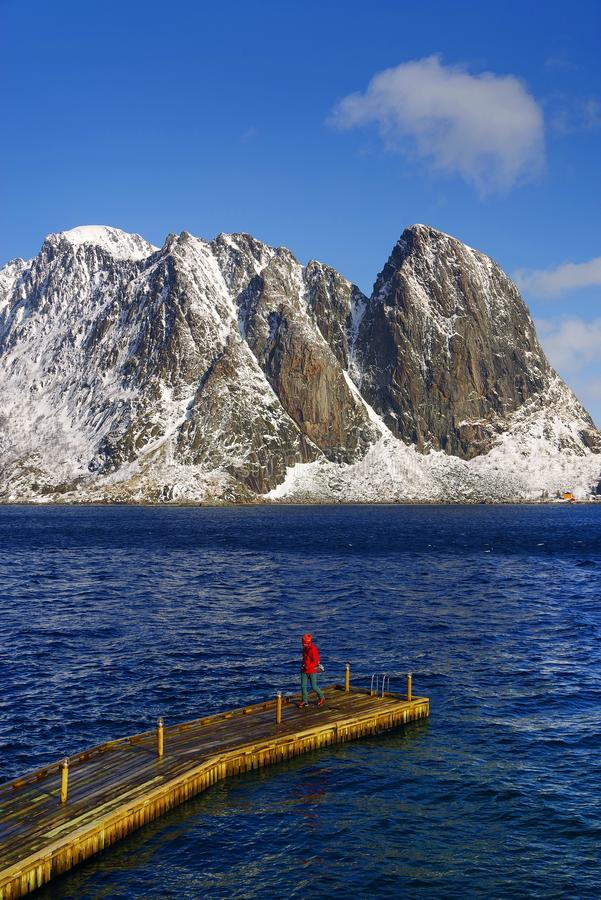 Turist på en ponton som beundrar landskapet i den Lofoten skärgården royaltyfri bild