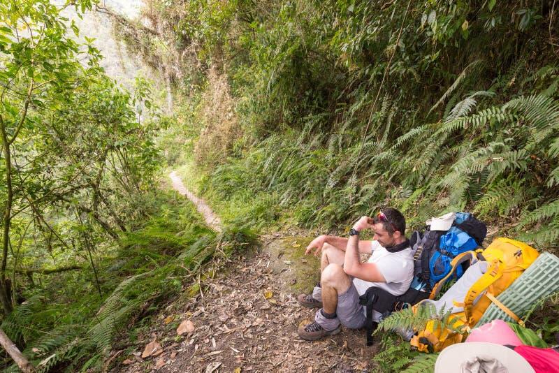 Turist- sammanträde för fotvandrare som vilar djungelskogslingan, Bolivia royaltyfri bild