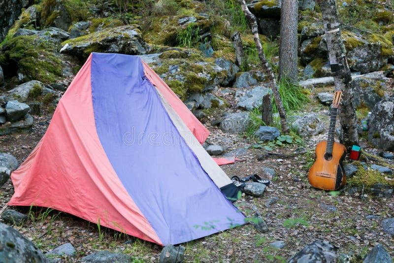 Turist- tält- och musikalgitarr vid trädet royaltyfria foton