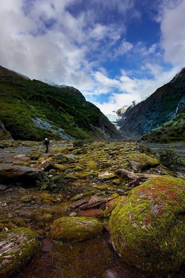 Turist- ta ett fotografi i franz josef glaciär en av mest populär resande destination i västkusten Nya Zeeland fotografering för bildbyråer