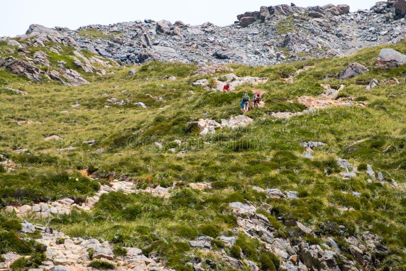Turista, backpacker, escursionista sulla pista Muller della capanna nel parco nazionale Mt Cook I fotografia stock