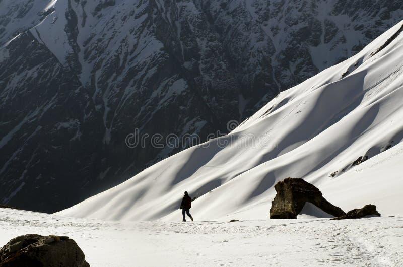 Turista che cammina nel campo base di Annapurna fotografia stock