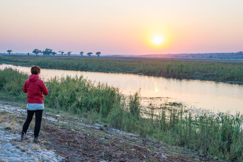 Turista che esamina alba sopra il fiume di Chobe, Namibia Botswana Africa Colori naturali, retrovisione fotografia stock libera da diritti