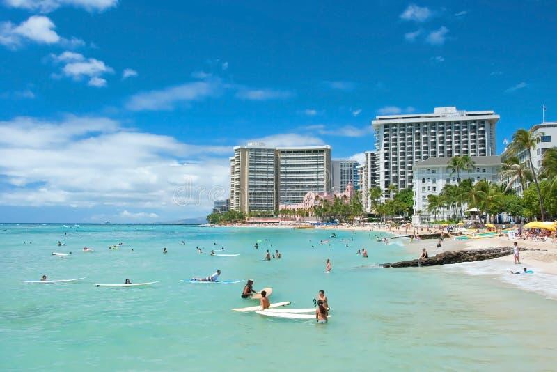Turista che prende il sole e che pratica il surfing sulla spiaggia di Waikiki in Hawai. fotografia stock