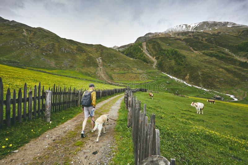 Turista con el perro en campo fotografía de archivo
