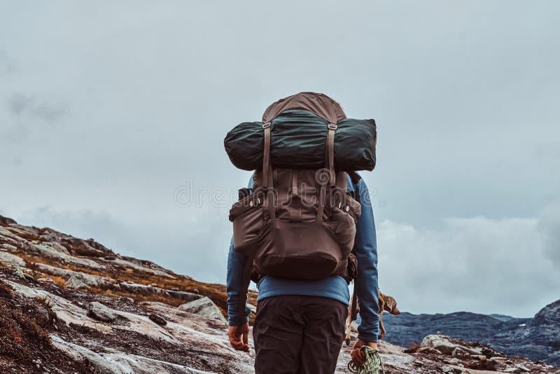 Turista con il suo cane sveglio che fa un'escursione in montagne della Norvegia immagine stock