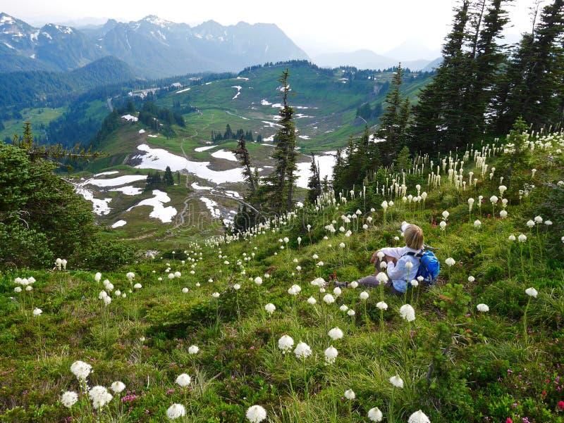 Turista da mulher que senta-se entre flores selvagens com Mountain View imagens de stock royalty free