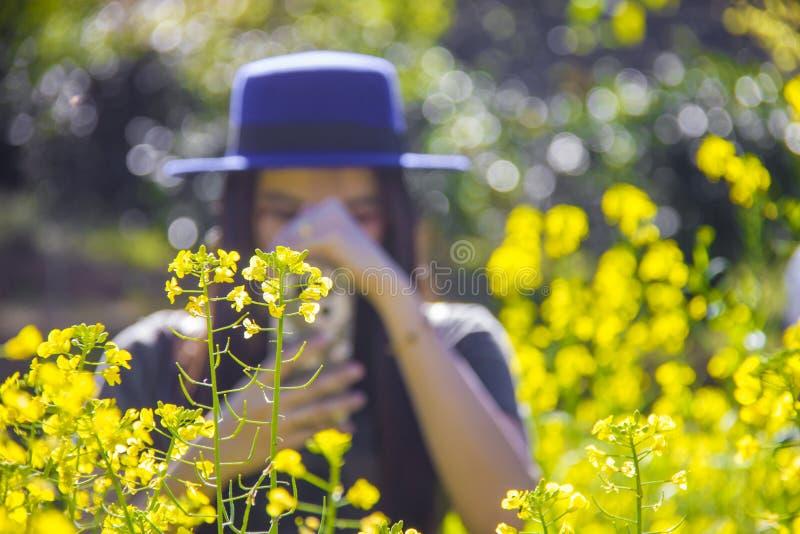 Turista da mulher que toma a foto de flores amarelas com smartphone fotos de stock royalty free