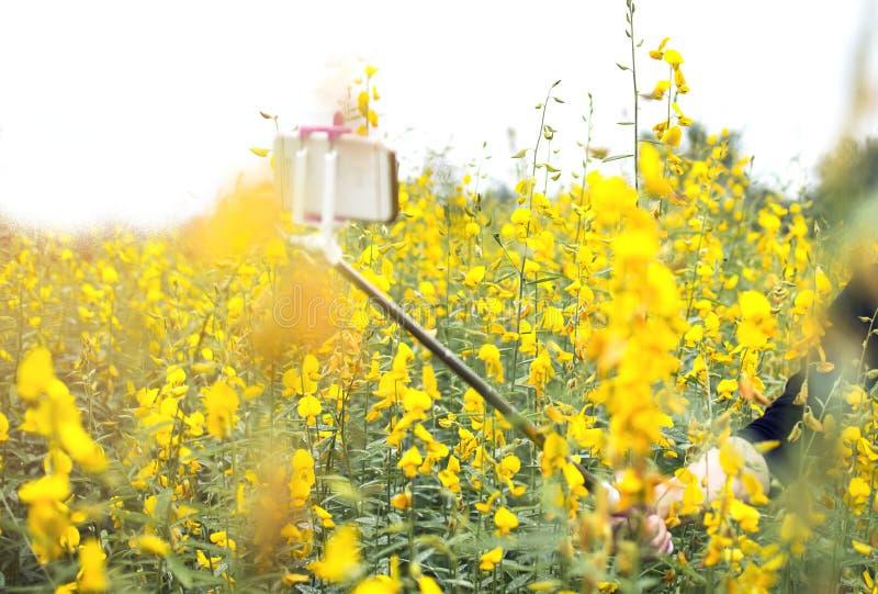 Turista da mulher que toma o selfie da foto pelo telefone celular com flores amarelas imagens de stock