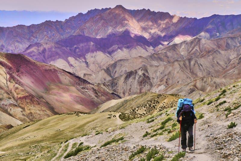 Turista de la mujer con una mochila que sube la cuesta escarpada con las montañas coloridas hermosas de Himalaya en el fondo, Lad fotos de archivo