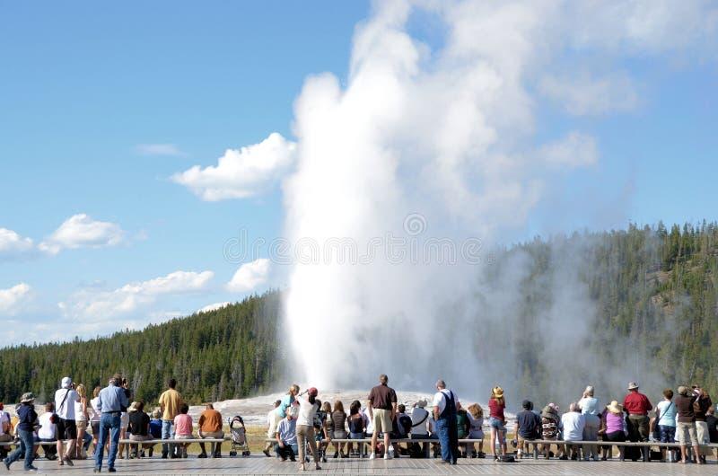 Turista de Yellowstone imagem de stock