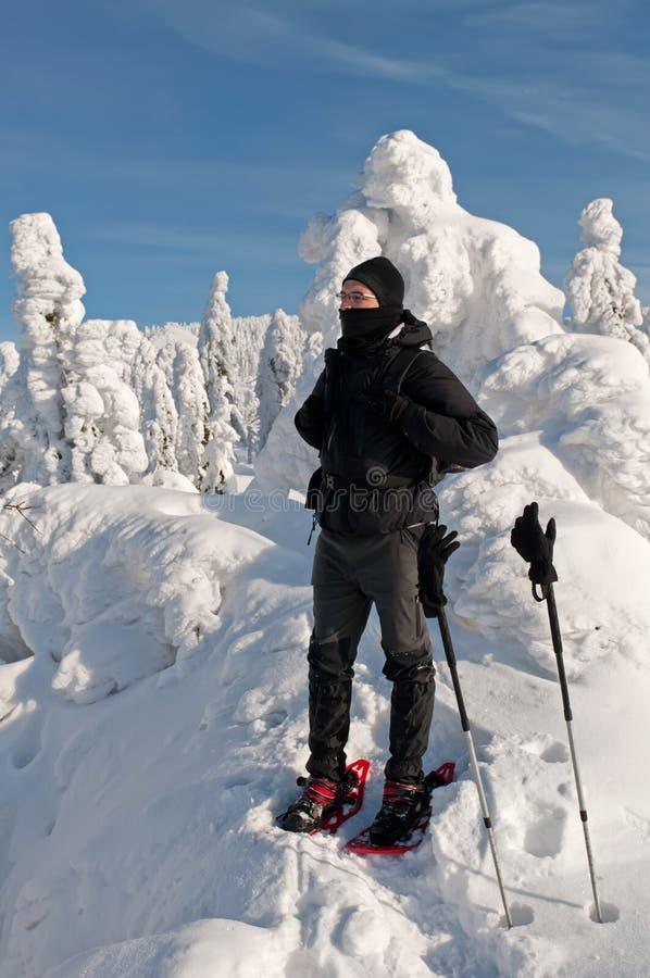Turista di inverno immagine stock libera da diritti