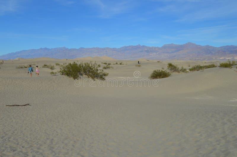 Turista di ringraziamento alle dune di sabbia del Mesquite in Death Valley fotografie stock libere da diritti
