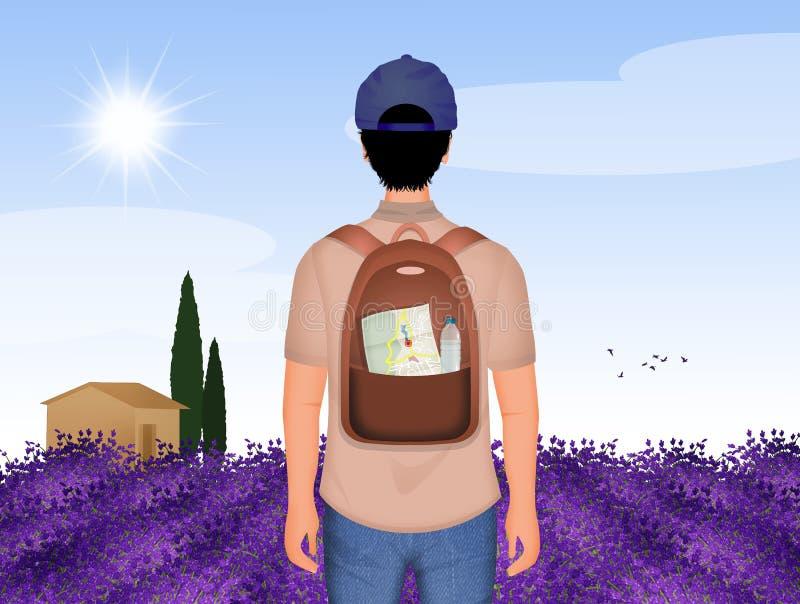 Turista em Provence ilustração royalty free