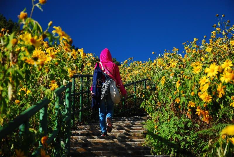 Turista en el campo de flor imagen de archivo libre de regalías