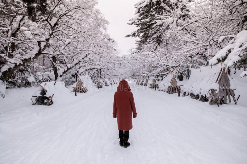Turista en el castillo en la estación del invierno, Aomori, Tohoku, Jap de Hirosaki fotografía de archivo