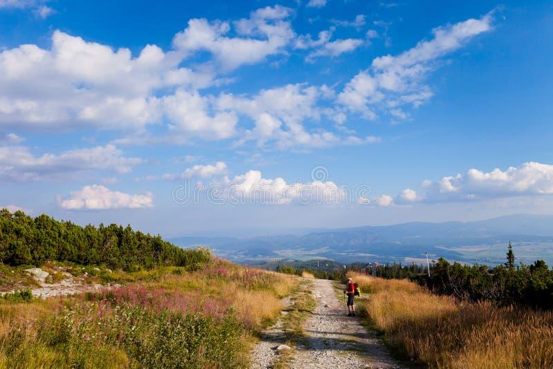 Turista en el dolina eslovaco de Furkotska fotografía de archivo libre de regalías