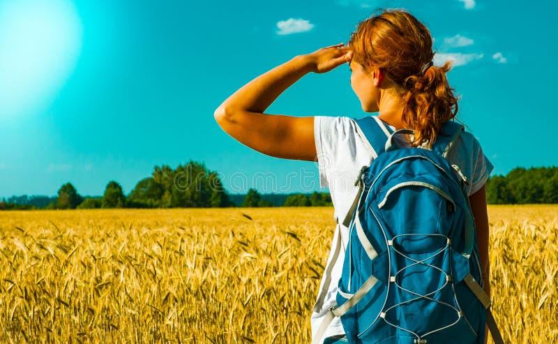 Turista fêmea novo com a trouxa que olha na distância perto de um campo de trigo sob o céu quente do verão fotos de stock royalty free