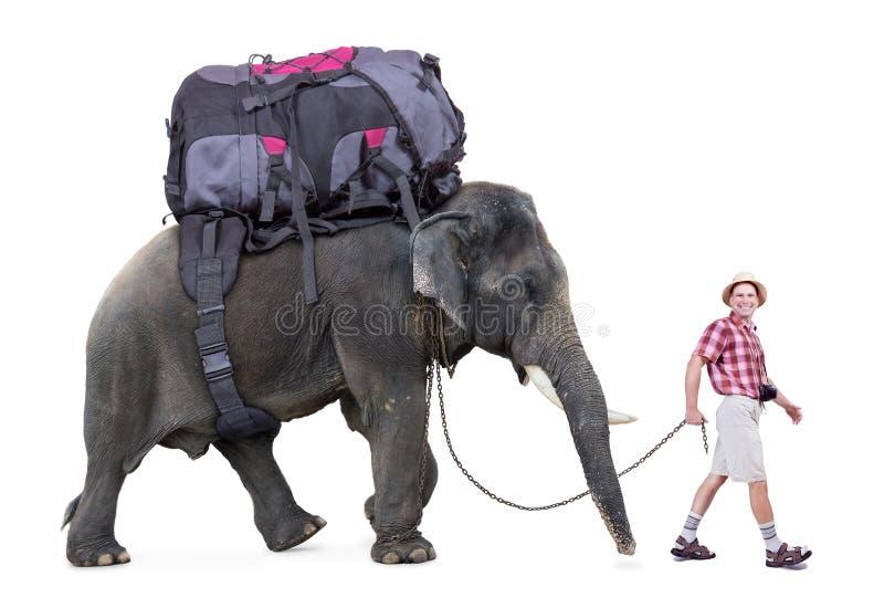 Turista felice che cammina un elefante immagine stock libera da diritti