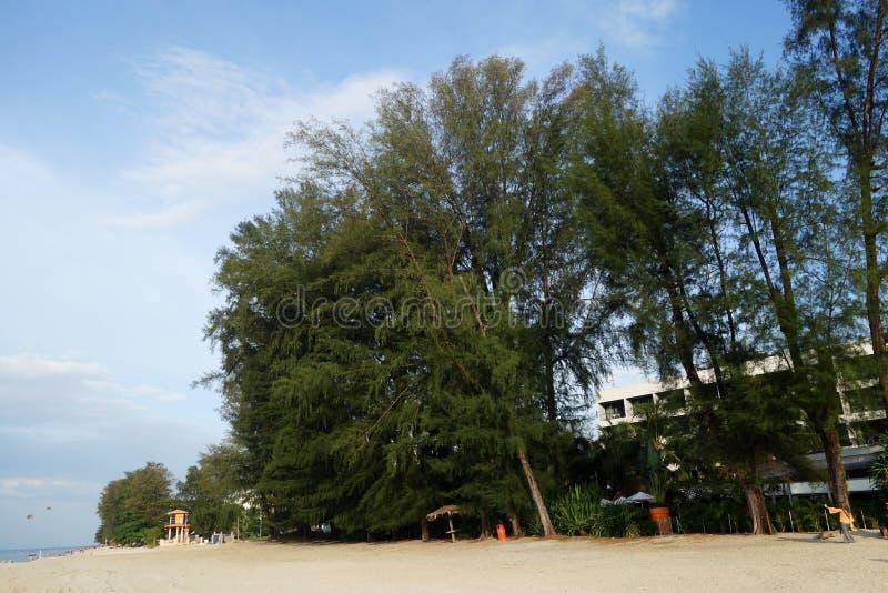 Turista não identificado que aprecia na praia de Batu Feringghi imagem de stock