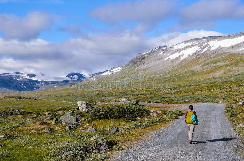 Turista no parque nacional de Jotunheimen imagens de stock