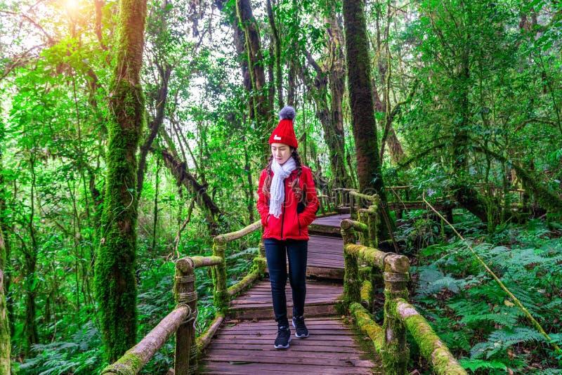 Turista que anda na fuga de natureza do ka do ANG no parque nacional de Doi Inthanon, Chiang Mai, Tailândia fotos de stock royalty free