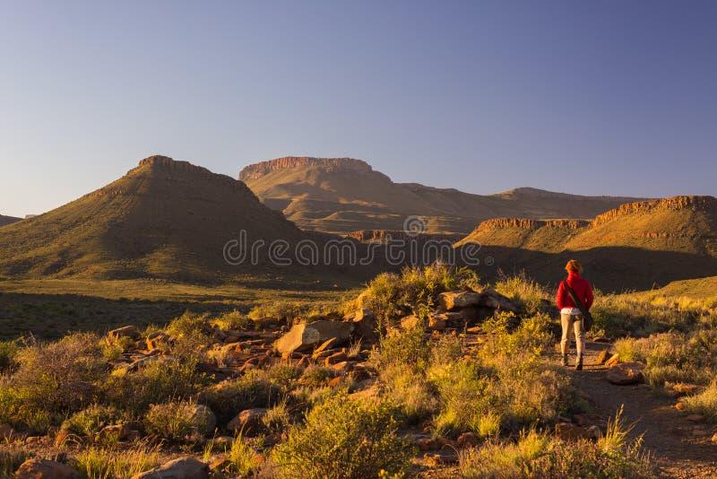 Turista que camina en el rastro marcado en el parque nacional del Karoo, Suráfrica Montañas, barrancos y acantilados escénicos de imagen de archivo libre de regalías