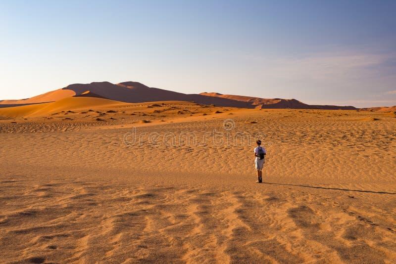 Turista que camina en las dunas de arena en Sossusvlei, desierto de Namib, parque nacional de Namib Naukluft, Namibia Gente que v imagen de archivo libre de regalías