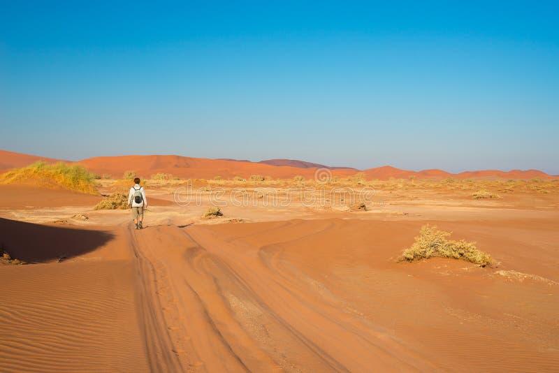 Turista que camina a Sossusvlei, desierto de Namib, parque nacional de Namib Naukluft, desetination scanic del viaje en Namibia A imagen de archivo
