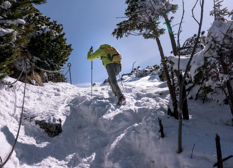 Turista que escala ao longo de um trajeto íngreme, coberto de neve fixado por correntes imagens de stock royalty free