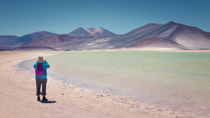 Turista que fotografa o vulcão de Caichinque e de Cerro Medano de Salar de Talar, perto das águas Calientes, na região de Antofag imagens de stock