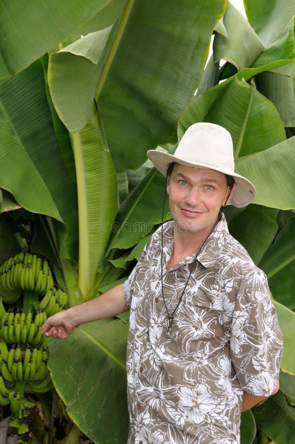 Turista surpreendido na plantação de banana imagem de stock royalty free