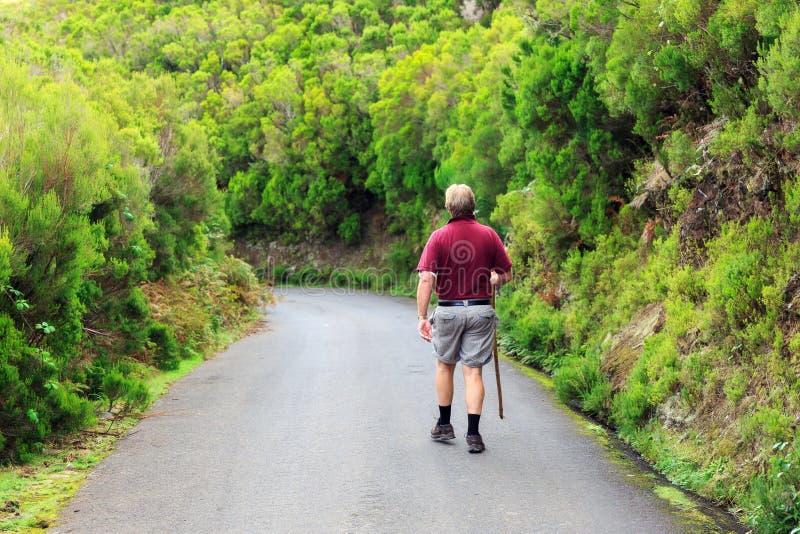 Turista verde Madeira del paseo imagen de archivo libre de regalías