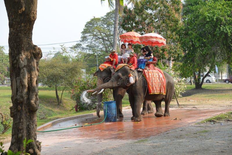 Turistas asiáticos que sentam-se em elefantes foto de stock