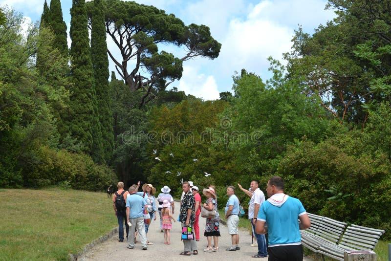 Turistas del viaje en el parque imágenes de archivo libres de regalías